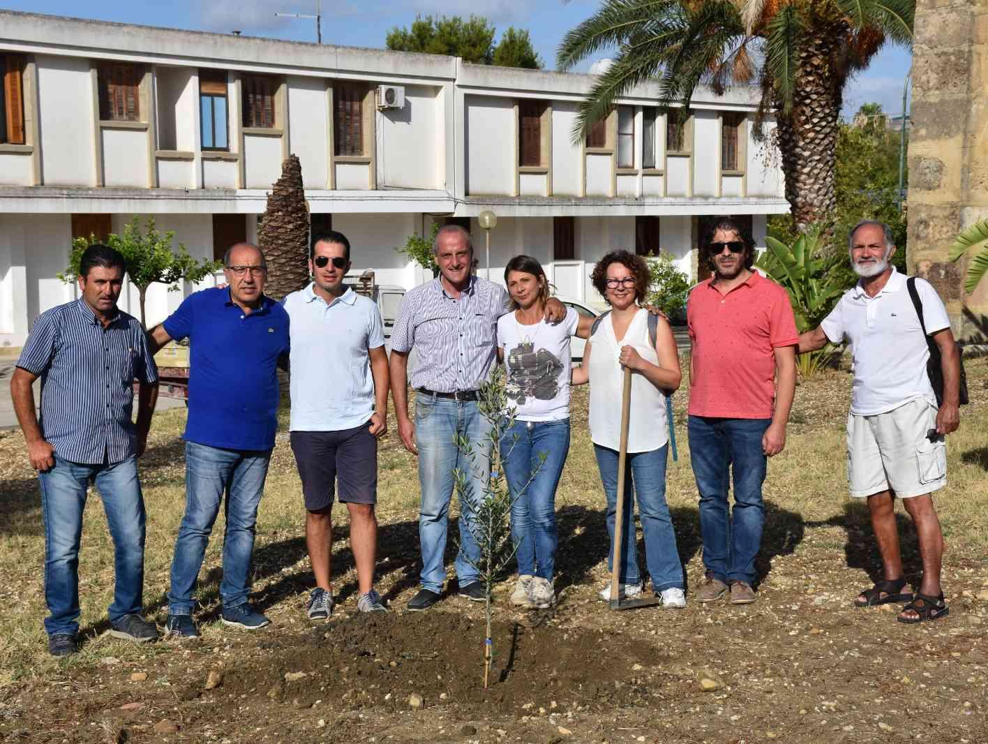 Immagine articolo: Salaparuta, cittadini donano al comune un albero di ulivo per la Giornata mondiale dell'Albero 2019