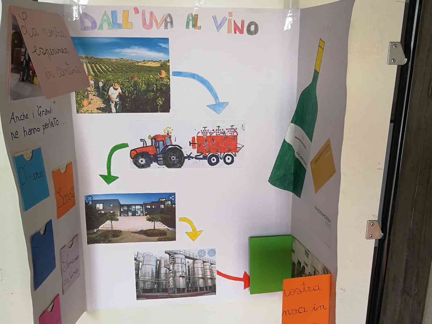 """Immagine articolo: Progetto """"Viticoltura 50"""": grande successo per il progetto sui 50 anni di Viticoltura a Menfi"""