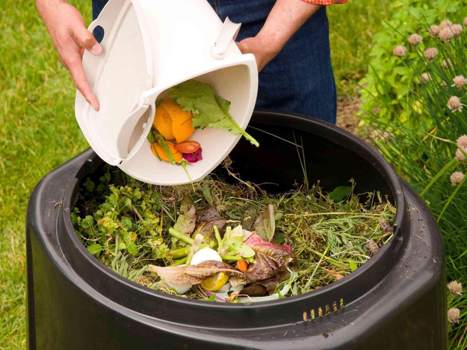 Immagine articolo: Abbassare il costo della TARI? A Menfi è possibile con il compostaggio domestico