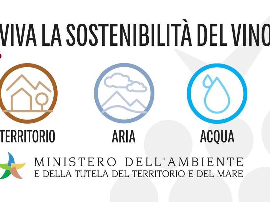 Immagine articolo: Importante riconoscimento per le Cantine Settesoli: Ottenuta la certificazione VIVA per la sostenibilità in viticoltura