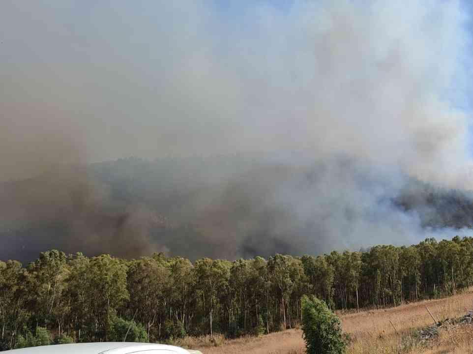 Immagine articolo: Ancora vasti incendi nel Belìce. Tra Gibellina e Poggioreale vegetazione in fiamme. Corpo Forestale e Protezione Civile in azione