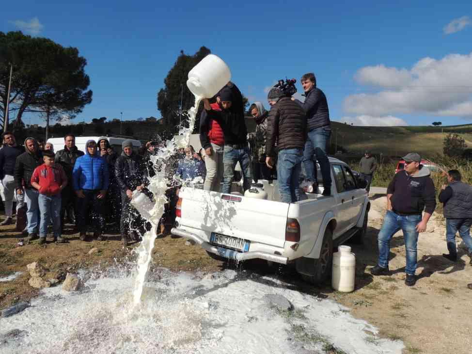 Immagine articolo: Poggioreale, manifestazione di protesta degli allevatori per il prezzo del latte