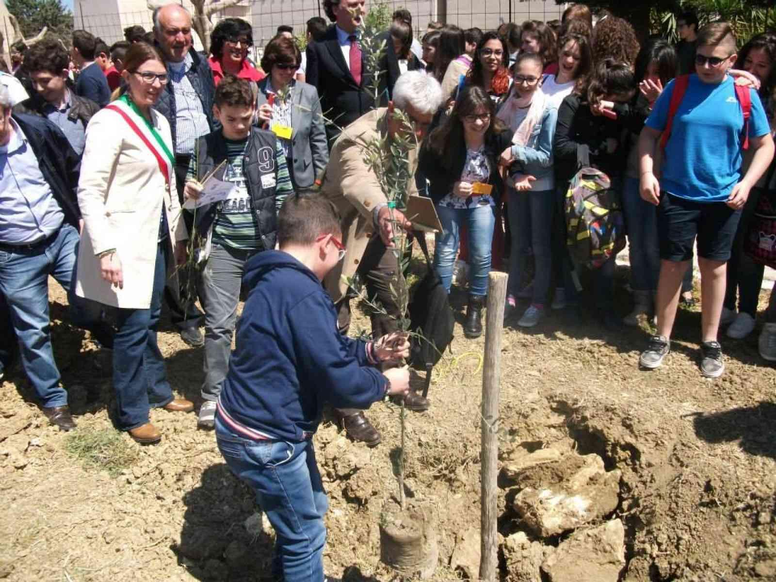 Giovani e giovanissimi piantano alberi di olivo per le strade di Menfi.
