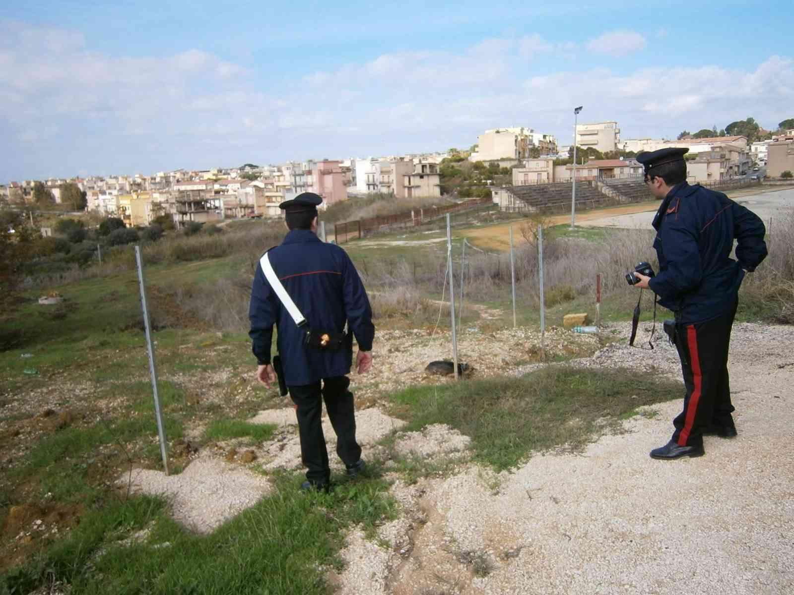"""Santa Margherita. Cane lasciato morire appeso a un palo. La rete: """"Giustizia!"""""""