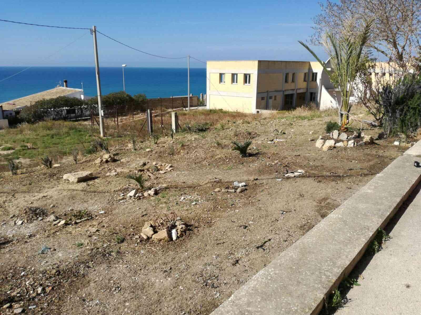 Menfi. Gruppo di volontari ripulisce e pianta alberi vicino la Torre di Porto Palo