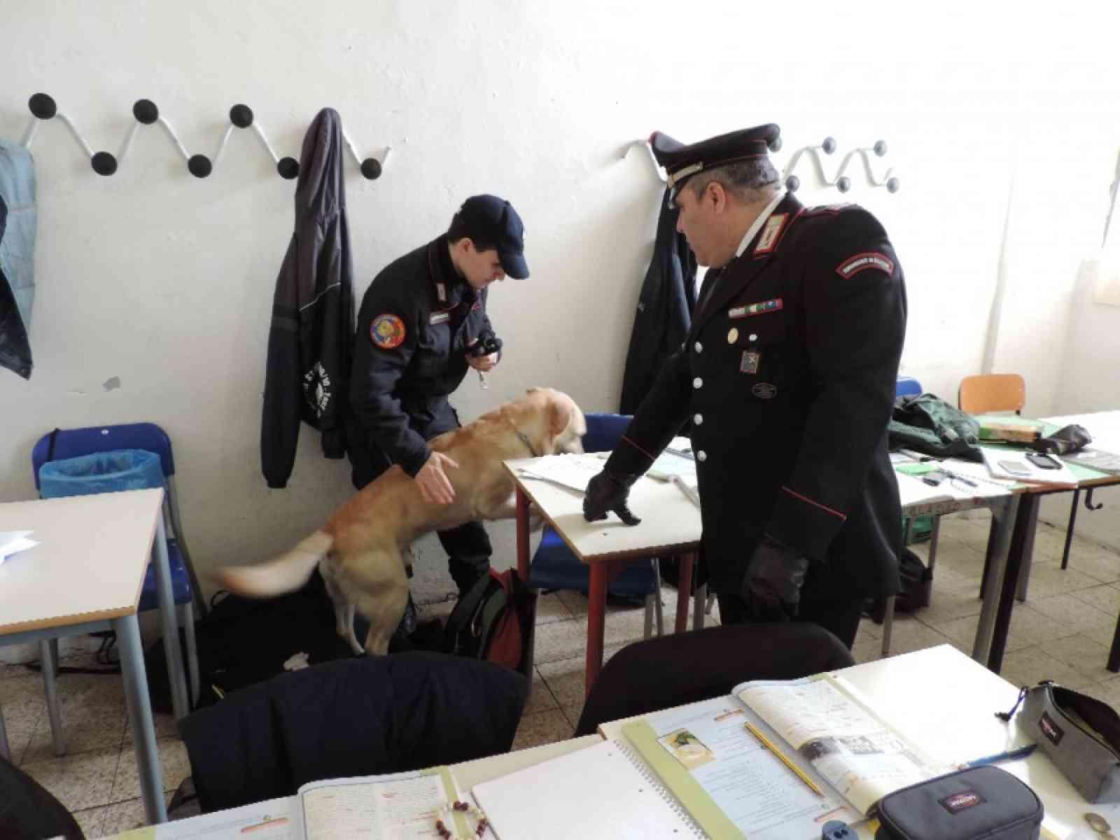 Cani antidroga in alcune classi dello Scientifico di Castelvetrano. Portati via due alunni
