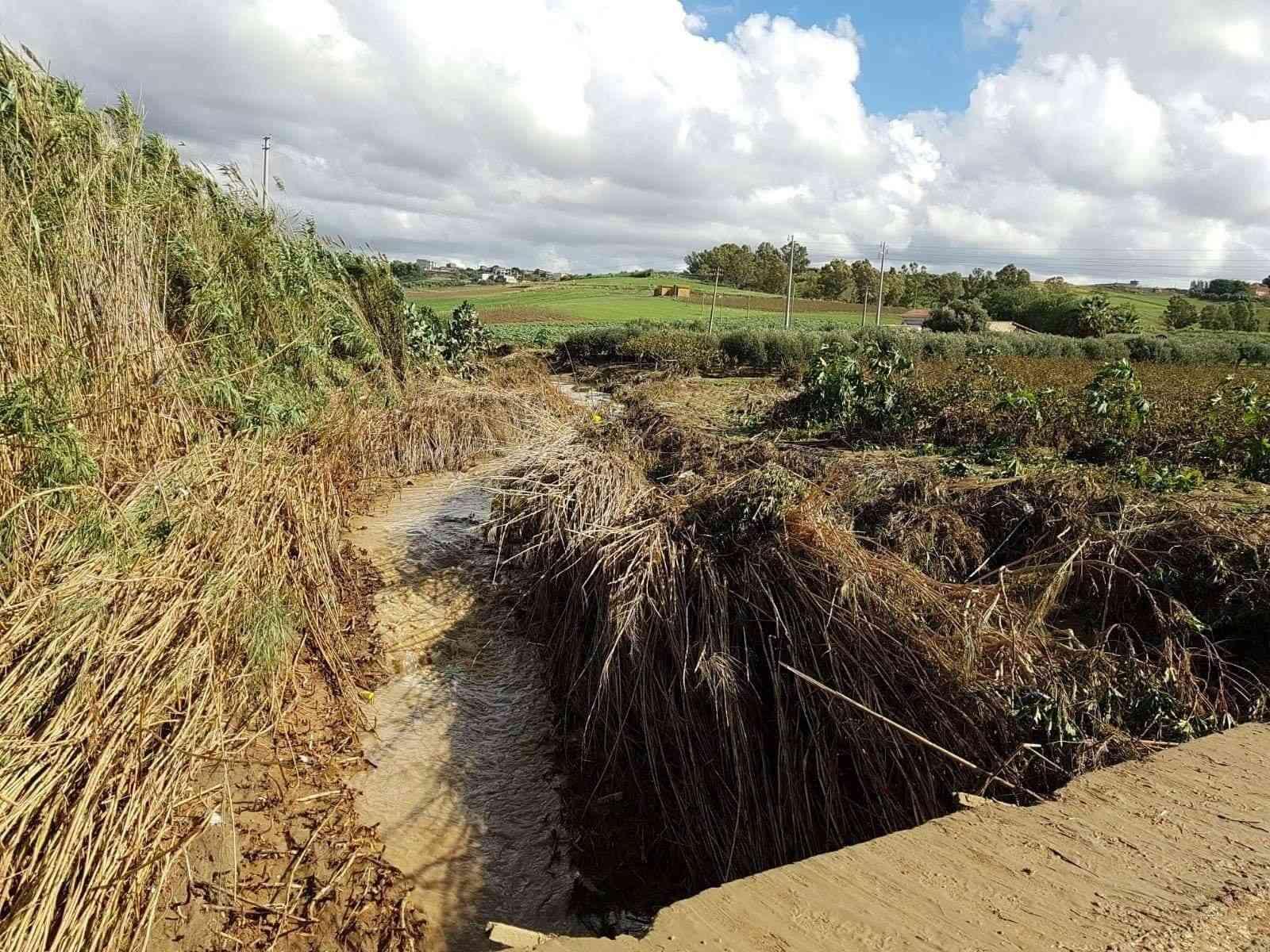 Immagine articolo: Dalla Regione 720 Mila Euro per la pulizia dei valloni di Menfi. Previsti interventi per Mandrarossa, Cavarretto Mirabile e Femminamorta