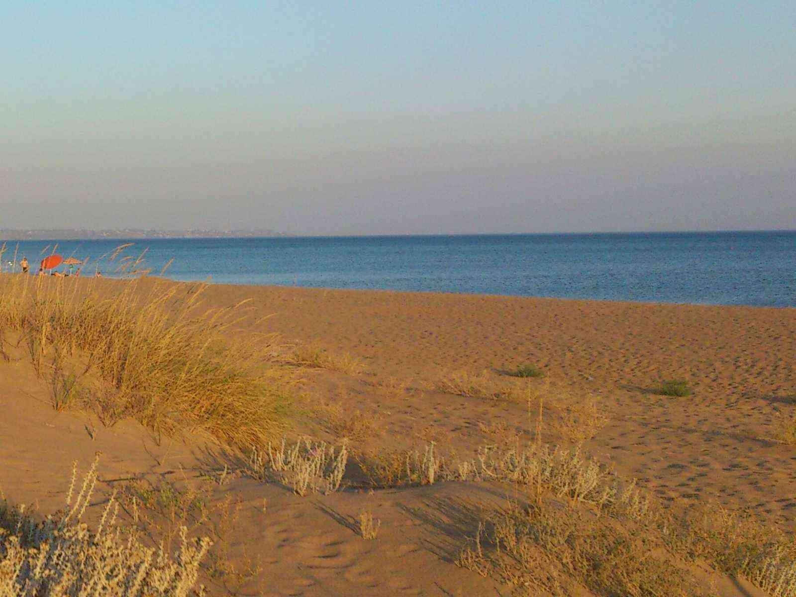 Immagine articolo: Bandiera Blu per le spiagge di Menfi anche quest'anno con Lido Fiori e Porto Palo