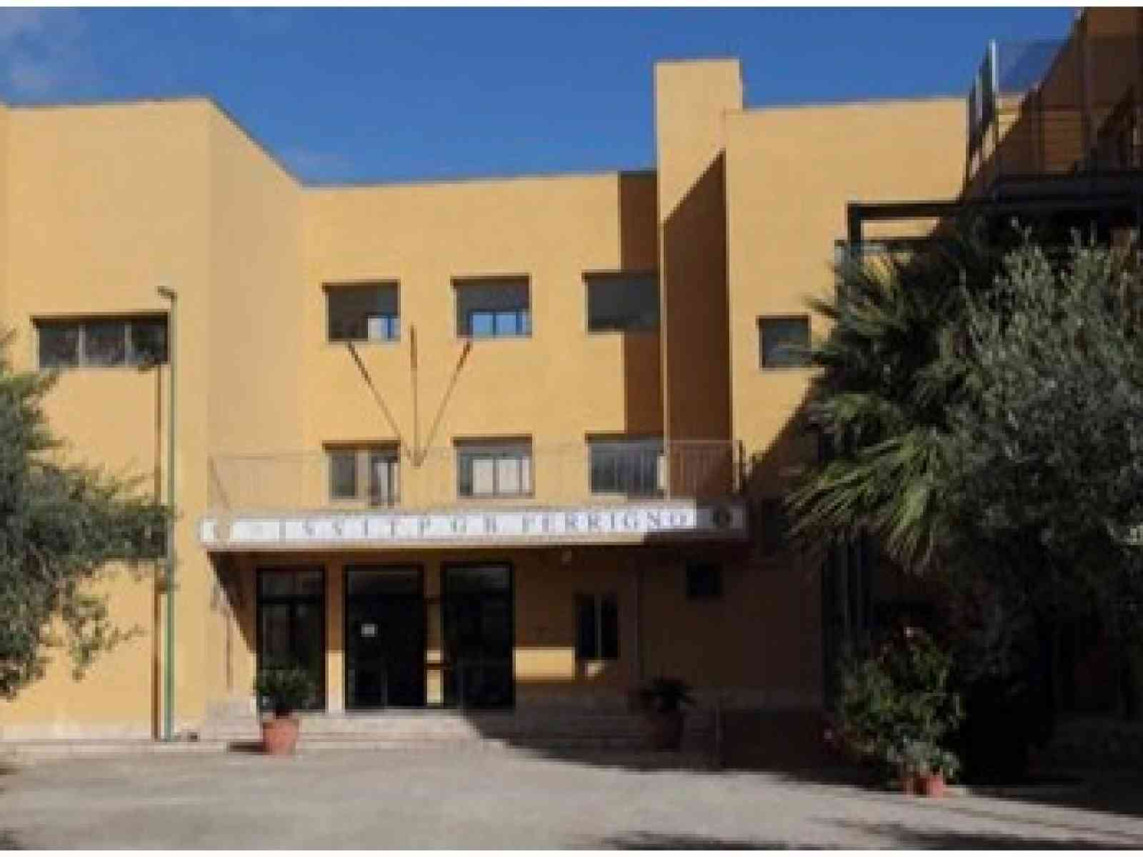"""Immagine articolo: Grande successo dell'Open day dell'Istituto Tecnico Commerciale e Professionale """"Ferrigno"""" di CVetrano"""