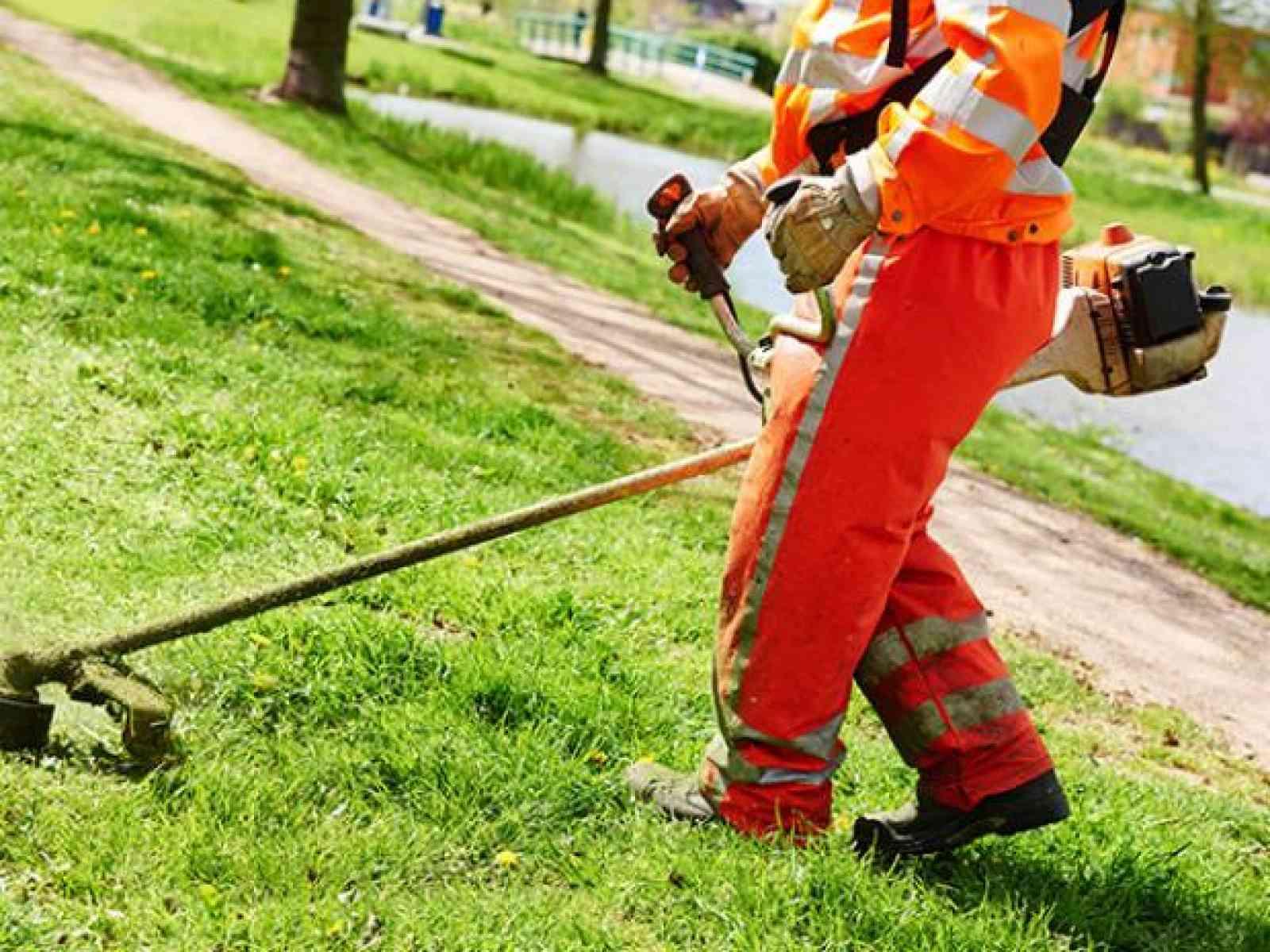 Immagine articolo: Montevago, deliberate le somme per la manutenzione del verde pubblico. Ecco le zone interessate